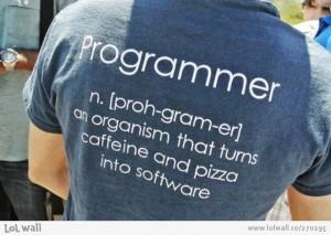 the-programmer_270195-700x